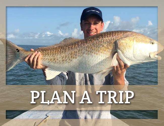 Plan a Trip with All Seasons Guide Service